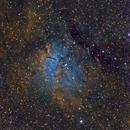 NGC 6823 in SHO,                                Michael J. Mangieri