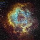Rosette Nebula Narrowband SHO mapped,                                Eddie_R