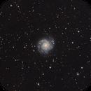 The M74 spiral galaxy in Pisces,                                Francesco Meschia
