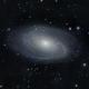 M81 Bodes Galaxy 1280mm 2020,                                Bob Stevenson