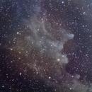 IC 2118 Witch Head Nebula,                                Riccardo A. Balle...