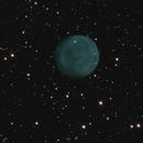 Abell 61 Ha-O3 with RGB Stars,                                Bill McLaughlin