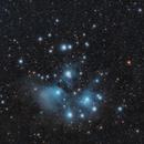 The Pleiades (M45),                                Ayman Naguib