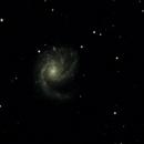 Pinwheel Galaxy,                                David Holko