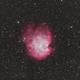 NGC2175,                                ++SiMoN++