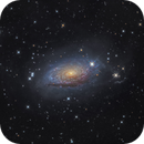 M63 Sunflower galaxy,                                Toshiya Arai