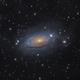 M63 Sunflower galaxy,                                Toshiya Arai