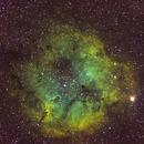 Elephant's Trunk Nebula imaged from Hull-O Farms Durham NY,                                westchester_optics