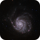 M101 Galaxy,                                Scott Denning
