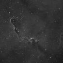 IC1396,                                Niamor