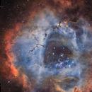 Rosette Nebula in Ha-OIII-RGB,                                Marcel Drechsler