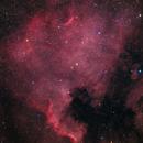 NGC 7000 North America,                                LeCarl99
