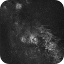 NGC7000 extremely wide field,                                  Rolf Dietrich