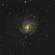 M101 Galaxy,                                gabriel