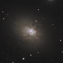 NGC 3077,                                Gary Imm