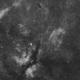 IC1318 + NGC6888 widefield,                                Christian63