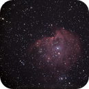 NGC 2174 Le singe,                    PascalB