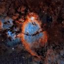 IC1795 FishHead Nebula,                                Anthony Husson