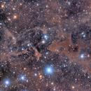 LBN 552, Creation of Adam in Cepheus,                                  Scott M. Stirling
