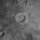 Lockdown Copernicus,                                Guillermo Gonzalez