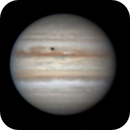 Jupiter with Europa's Shadow,                                Chappel Astro