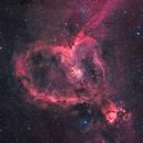 Heart Nebula,                                Marcel Drechsler