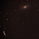 M81 / M 82 / Bodes Galaxy,                                Daniel Drechsler