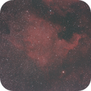 The North America Nebula,                                Jason Rudduck