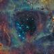 NGC 2244 - Rosette Nebula (Ha-OIII-OIII),                                  Falk Schiel