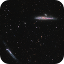 Starburst galaxy, NGC 4631 The Whale Galaxy & The Hockey Stick,                                Barry Wilson