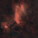 The Prawn Nebula,                                Astrogirl.Au