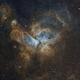 Eta Carinae Nebula,                                Newton Cesar Flor...