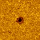 2020.06.10 Sun AR12765,                                Vladimir