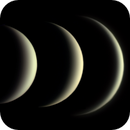 Metamorphosis of Venus in the last 6 weeks,                                Henning Schmidt