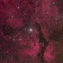 Gamma Cyg Nebula HOO Version,                                J. Norris