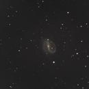 The Superman Galaxy - NGC 7479,                                Corey Rueckheim