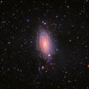 Messier 63 The Sunflower Galaxy,                                rveregin