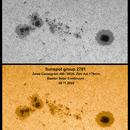 Sunspot group 2781, 20° Alt,  08.11.2020,                                Uwe Meiling