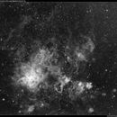 NGc 2070 among the Large Magellanic Cloud in Ha,                                Roger Groom