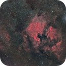 NGC 7000 widefield,                                  Tristan Campbell