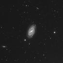Barred Spiral Galaxy M-109 (NGC 3992) B&W,                                Bogdan Jarzyna