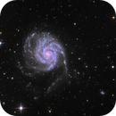 M101 The Pinwheel galaxy,                                UlfG