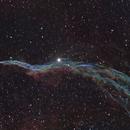 Western Veil Nebula,                                Philip Gelsheimer