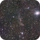 IC2118  Witch Head Nebula,                                Ray Heinle