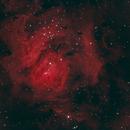M8 - Lagoon Nebula,                                terestron