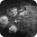 The Cat's Paw Nebula in Ha,                                DiscoDuck