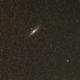 Andromeda,                                mhohenwald