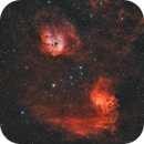 Flaming Star with Tadpoles in BiColor,                                pmneo