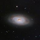 M64– The Blackeye Galaxy,                                Shannon Calvert