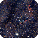 Portion of IC1396, the Elephant Trunk nebula,                                Jamee Donithan